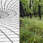 Теории гравитации