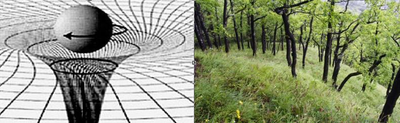 teorii_gravitazii1